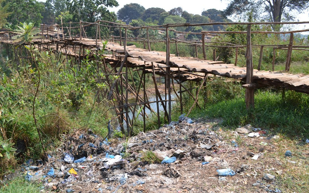 Thin plastics banned, nature prioritised and bat habitat mapped: How our UNA Rivers Project is influencing policy in Malawi