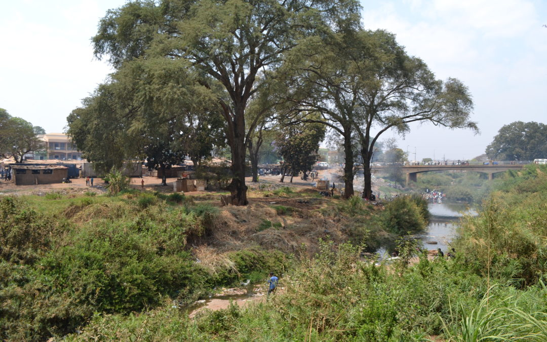 Integrating urban natural assets into city planning and decision-making in African cities: A new handbook series