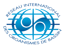 Basin organisation