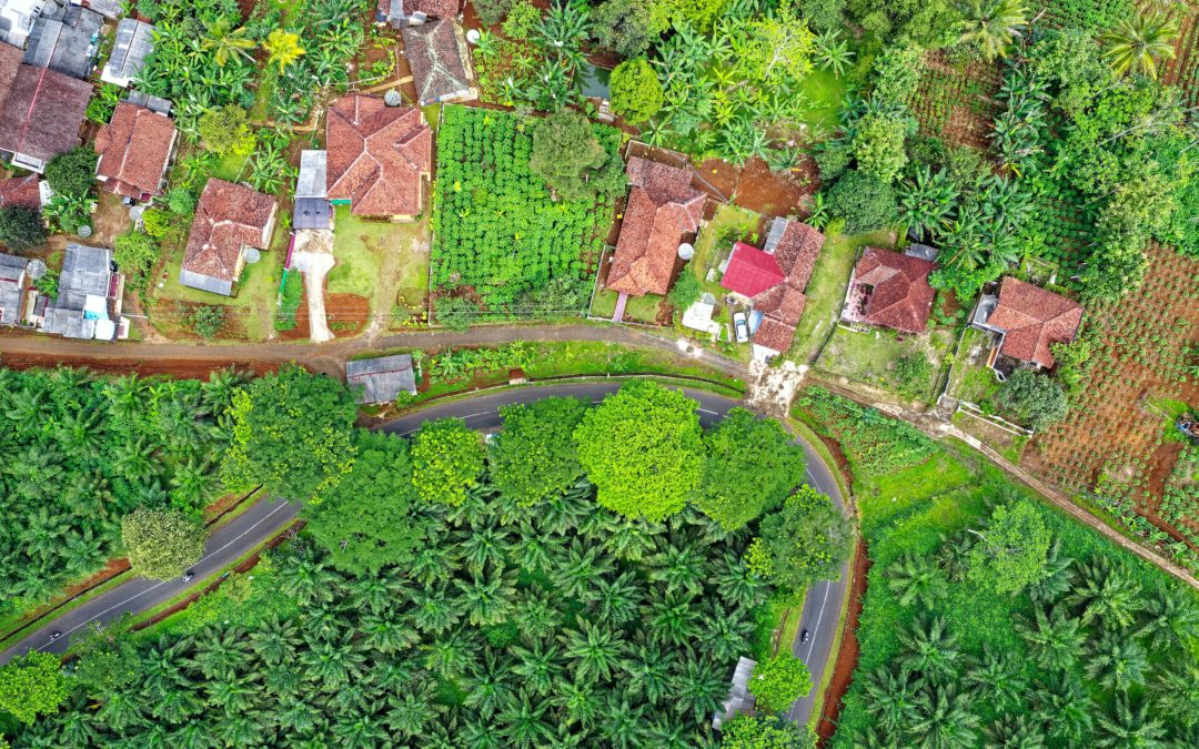Local governments should enable cities to form small, sustainable communities that nourish food, water and land